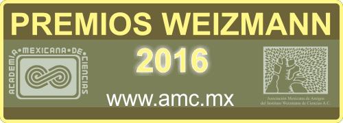 Premio Weizmann